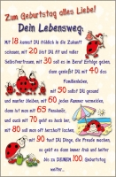 Grußkarten Geburtstag Glückskäfer Set/30