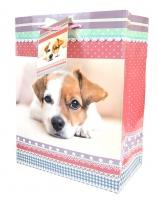 Geschenktasche Hunde und Katzen Midi Set/20