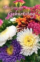 Grußkarten Geburtstag Floris Set/100