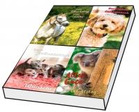 Grußkarten Geburtstag Tierfreunde Set/100
