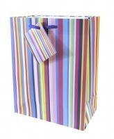 Geschenktaschen Color Streifen mittel Set/20