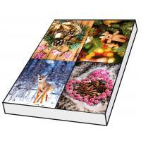 Grußkarten Weihnachten Fotomotive ohne Text Set/100
