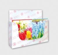 Mini-Karten Frühling Set/60
