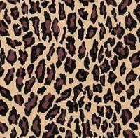 Servietten ti-flair Wildlife 33 x 33 cm Pack/1 MLA